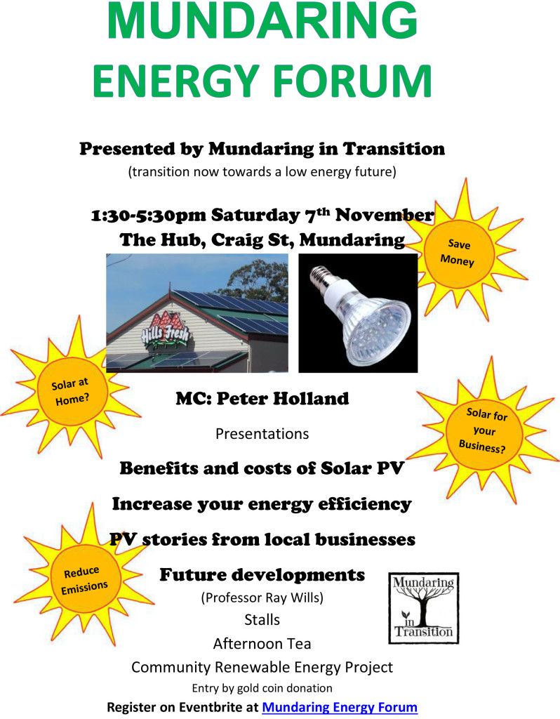 Flyer - EnergyForum2015-d with Ray Wills