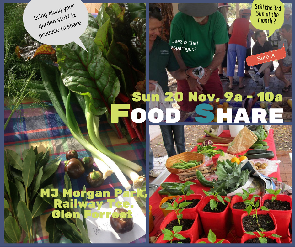 food-share-20-nov-16